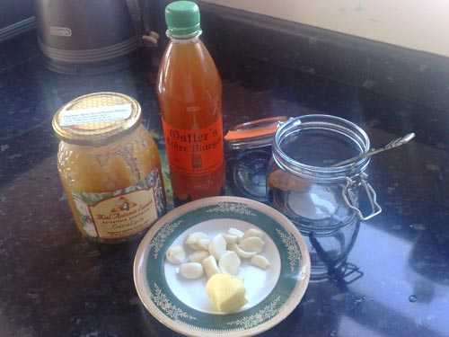 Garlic, Honey and Apple Cider Vinegar: Must Have Excellent Home Remedy