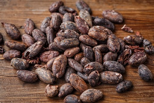 cocoa-beans
